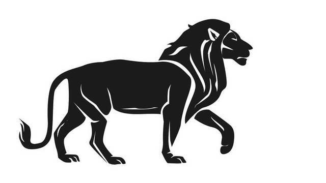 Vom Erfolg verwöhnt: Löwe