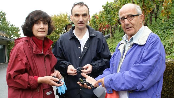 Jitka Vobecka, Jan Vobecky und Kurt Wernli (von links) hätten am Samstag gerne Trauben gelesen. Sibylle Haltiner