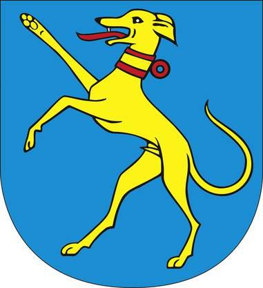 Wappen von Hunzenschwil