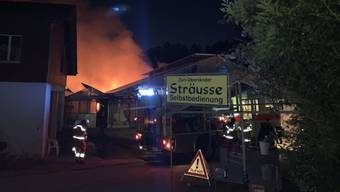 Beim Brand in einem Gewächshaus in Russikon entstand ein Sachschaden in der Höhe von mehreren zehntausend Franken.