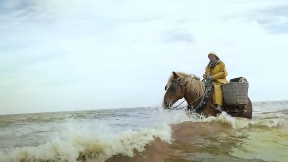 Fischen mit Pferd: Das sind die letzten Männer, die diese uralte Tradition ausführen