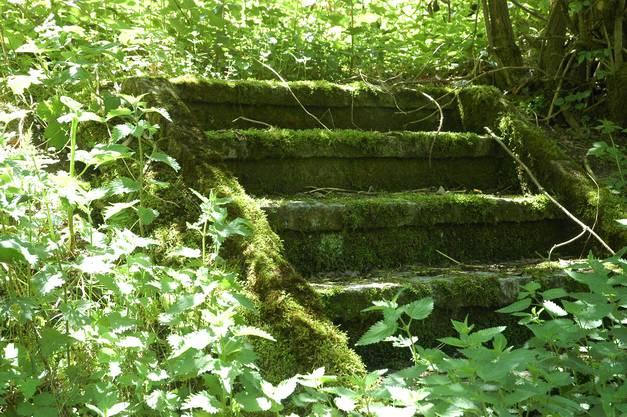 Auch die Treppe zeigt sich sanierungsbedürftig.