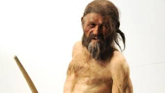 Nicht nur sein Aussehen wurde rekonstruiert: Ein neues Forschungsprojekt will sich nun Ötzis Stimme vornehmen. (Archiv)