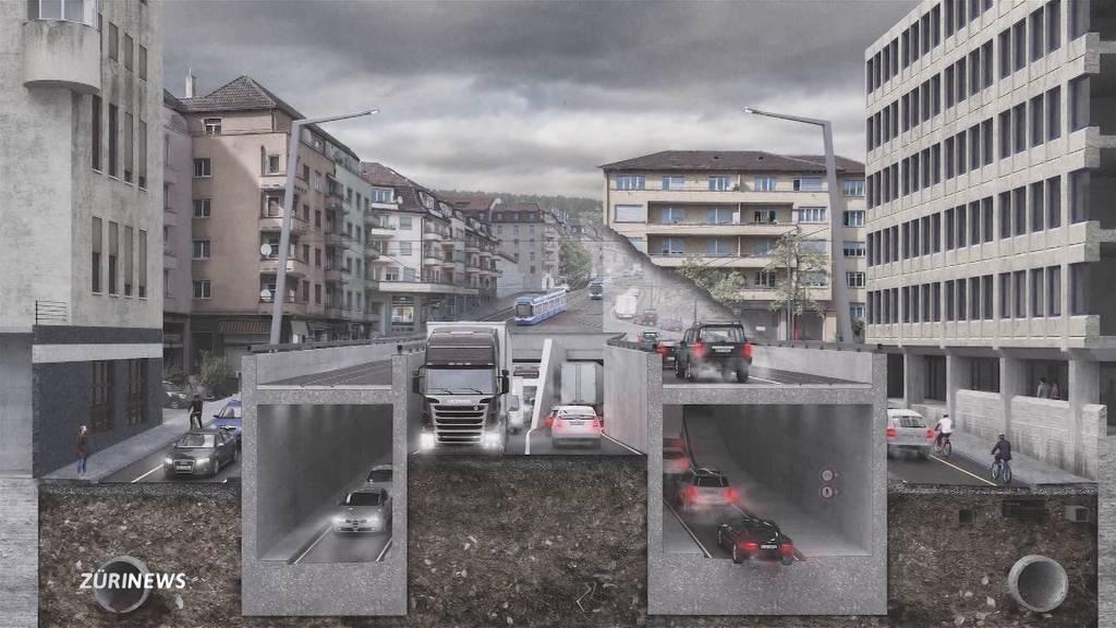 Teures Projekt: Das sagen die Rosengarten-Gegner