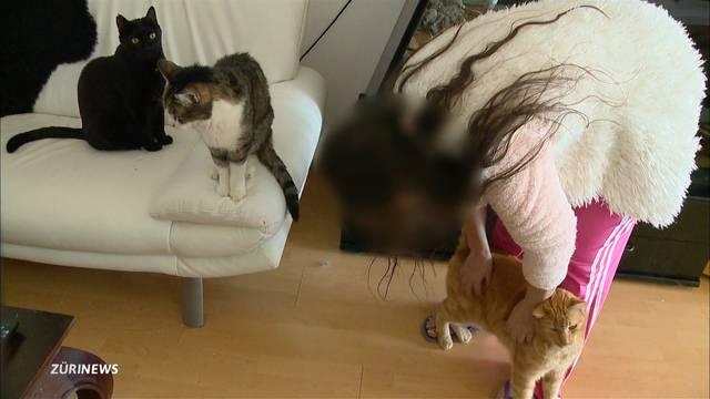 Katzendiebin oder einfach ein Herz für Tiere?