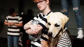 Publikumsliebling Hund Dinka in «Wohin du mich führst».