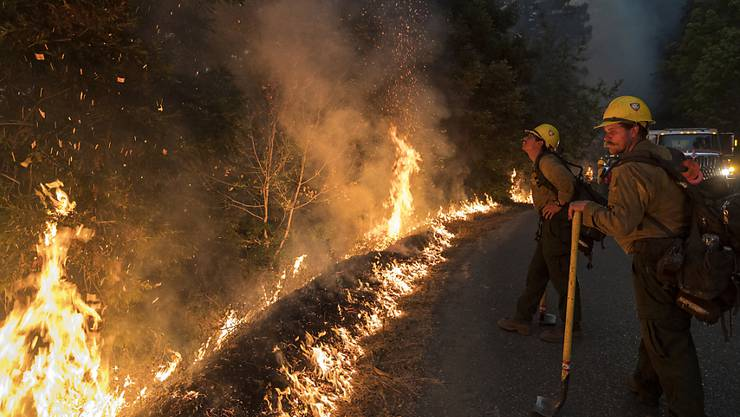 Feuerwehrleute überwachen einen kontrollierten Brand entlang der Nacimiento-Fergusson Road, um das Dolan-Feuer in der Nähe von Big Sur, einzudämmen. Foto: Nic Coury/AP/dpa
