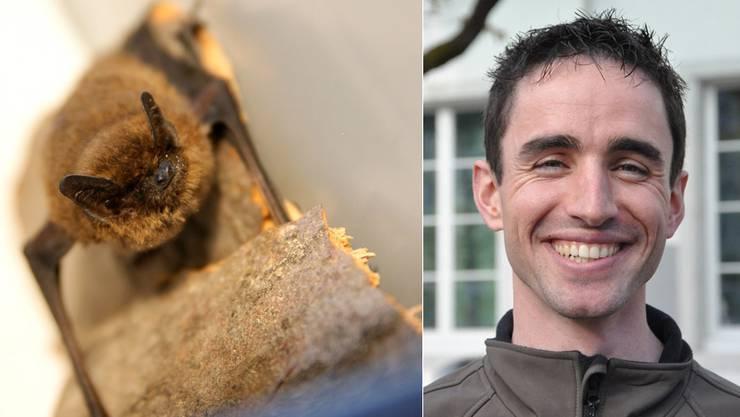 Elias Bader ist Fledermausbeauftragter.