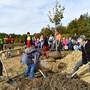 Am Dienstag, 20.10.2020, wurde auf der ehemaligen Deponie Rothacker bei Walterswil eine Linde gepflanzt.