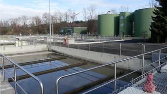 Die Kläranlage und diverse Kanalisationsstränge müssen in Muri saniert werden – das verursacht Kosten in zweistelliger Millionenhöhe. Eddy Schambron