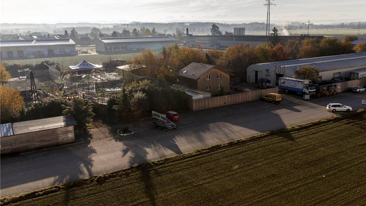 Auf dem Fadacker in Subingen betreibt René Strickler einen Rauptierpark.