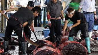 In Japan ist Walfleisch beliebt (Archivbild)
