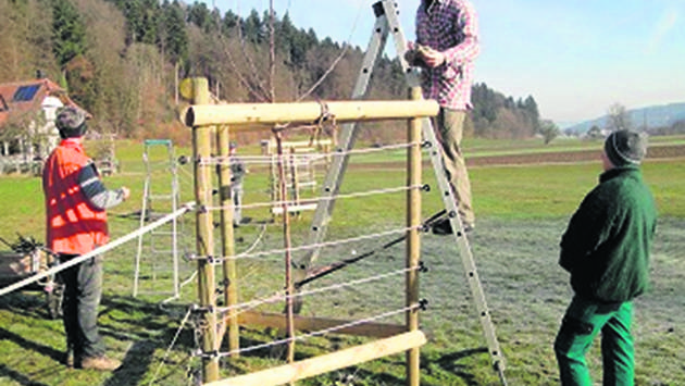 Dieses Jahr wurden die Teilnehmer gleichzeitig im Bereich «Baumschnitt» geschult.