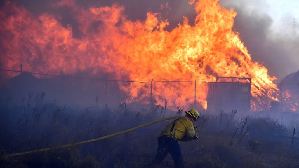 Feuer in Südkalifornien treibt Tausende aus ihren Häusern