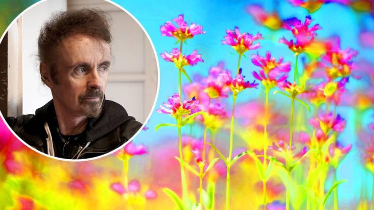 Optische Verzerrungen, grelle Farben und ein verändertes Zeitgefühl: T. C. Boyle schreibt über den Sinnesrausch unter LSD.