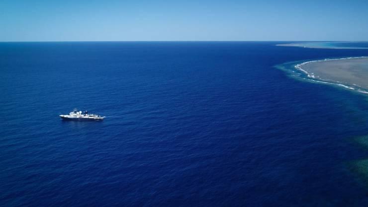 Das Team entdeckte das riesige Korallenriff während einer Erkundungsfahrt an Bord des Forschungsschiffs Falkor.