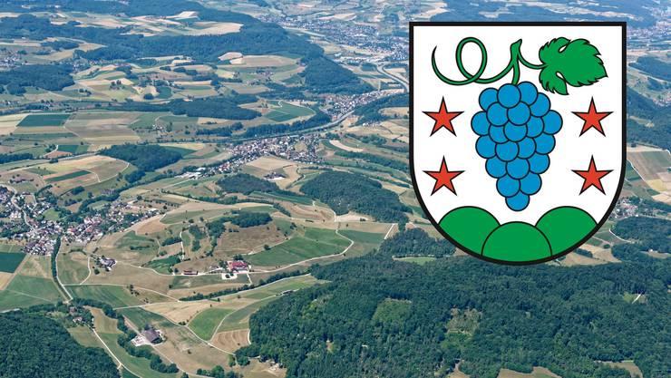 Bözen, Effingen, Elfingen und Hornussen wollen fusionieren. Die Bevölkerung hat dieses Wappen für die Fusionsgemeinde ausgewählt.