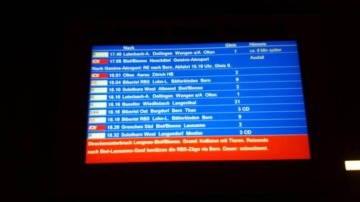 Die SBB warnt auf ihren Anzeigetafeln vor dem Streckenunterbruch. Dauer: unbestimmt.