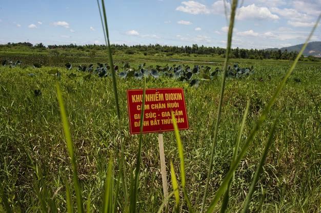 2012 – dieses Feld nahe des Flughafens Danang ist vom Vietnamkrieg noch immer Dioxin-verseucht