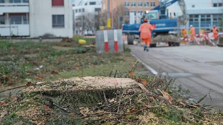 Wer erleben wolle, wie ein einst wohnliches Quartier mit viel Aufwand zerstört werde, solle in den nächsten Tagen an der Spitalstrasse vorbeischauen, sagte Gemeinderätin Heidemarie Busch (CVP).