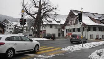 Muss weg: die Linde mitten in Weiningen. Sie wird während der Bauarbeiten ersetzt. Grund: Der Baum ist krank.Sandro Zimmerli