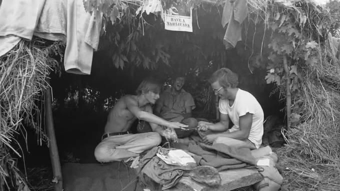 Musik-Fans blicken auf 50 Jahre Woodstock zurück