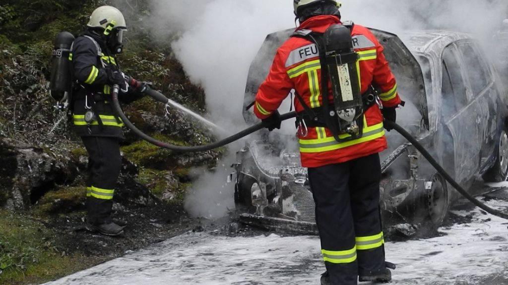 Der Lenker konnte aussteigen, bevor das Auto Feuer fing.