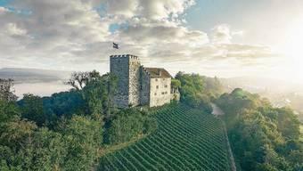 «Bürger» waren ursprünglich die wehrpflichtigen Bewohner von Burgen, die für den Schutz derer bürgten, die darin lebten (Symbolbild).