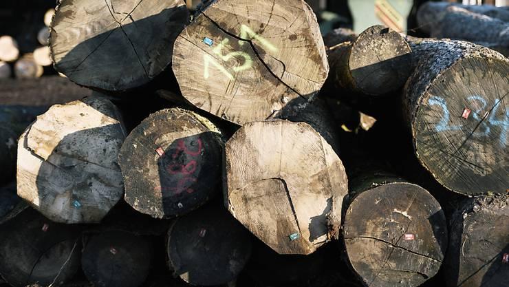 Die wirtschaftliche Situation der Schweizer Forstbetriebe bleibt angespannt. Vor allem Stammholz war 2016 weniger gefragt. (Symbolbild)