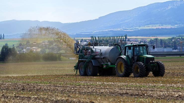 Die Ammoniak-Emissionen aus der Landwirtschaft führen zu Überdüngung und Versauerung. (Symbolbild)