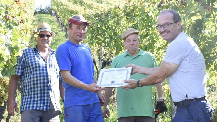 Das Rebbergteam (v.l. Charlie Frey, Rolf Stöckli und Bruno Jenni) erhält ein Gold-Diplom von Hanspeter Frey.