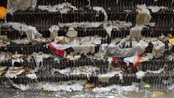 Rückstände von Medikamenten, Kosmetika oder Putzmitteln gelangen durch die Kläranlagen in die Gewässer, wo sie sich negativ auf Fische, Kleintiere und Pflanzen auswirken. Laut dem Bundesrat gibt es aber bereits genug Gegenmassnahmen. (Symbolbild)