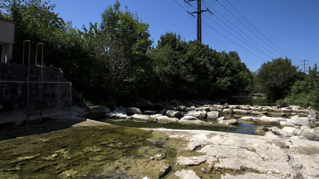 Auch die Natur litt im Hitzesommer 2015. Die Folge waren unter anderem ausgetrocknete Flussbetten (Archivbild).