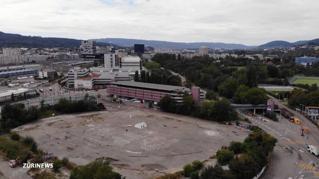 Stadiongegner fordern «klimafreundliches und soziales» Hardturmprojekt
