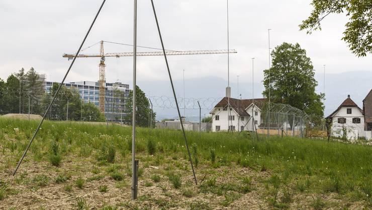 Im Mai waren die Baugespanne für die Überbauung im Schöngrün ausgesteckt.