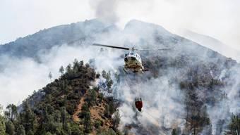 Lösch-Helikopter versuchen das sogenannte Ferguson-Feuer in der Nähe des Yosemite-Nationalparks in Kalifornien zu löschen. (Archivbild)