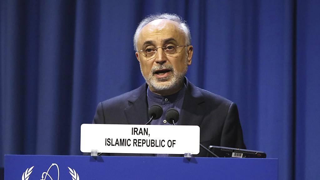 ARCHIV - Ali Akbar Salehi, Vizepräsident und Leiter der Atomenergie-Organisation des Iran, spricht zur Eröffnung der 63. Generalkonferenz der Internationalen Atomenergiebehörde (IAEA) im International Center. Foto: Ronald Zak/AP/dpa