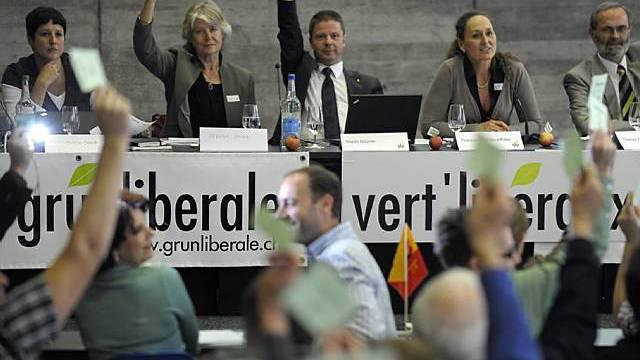 Delegierte stimmen ab (Archiv)