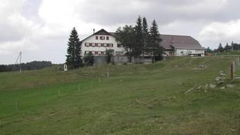 Die Wanderung beginnt auf dem Untergrenchenberg.