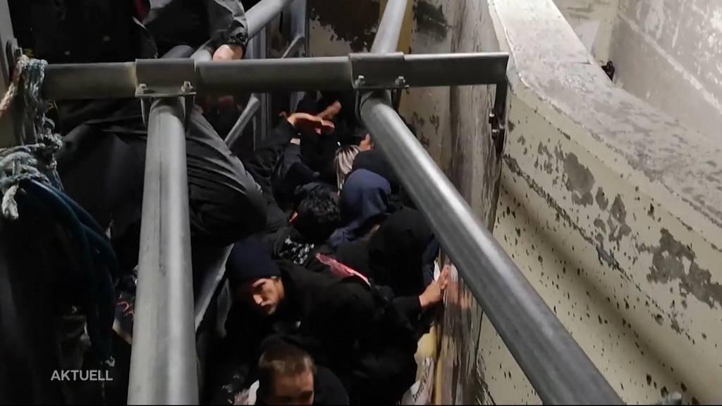 Monsterprozess: 34 Schlachthofbesetzer gehen gegen Strafen vor