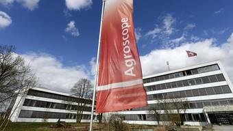 Der Bund plant, die Agroscope-Forschungsanlagen Zürich-Reckenholz (Bild) und Wädenswil zu schliessen. (Archiv)