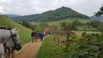 Auf dem Weg nach Herznach: Diese Wanderung wird der Gruppe in Erinnerung bleiben. zvg/Jurapark Aargau