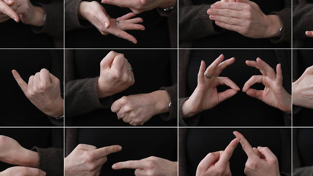 Gebärdensprache. (Symbolbild)