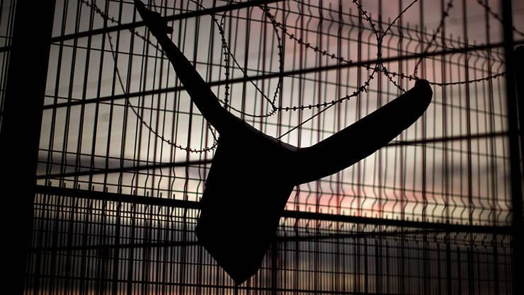 Ausbruchsversuch aus dem Gefängnis: Hund macht Häftlingen Strich durch die Rechnung (Symbolbild)