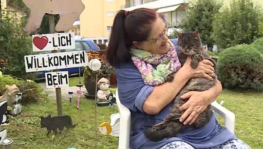 Offenes Herz und offenes Portemonnaie: Wie sich «Katzenheidi» um Kater Leo kümmert