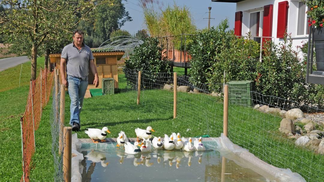 Interview mit dem Enten- und Säuli-Trainer aus Muri