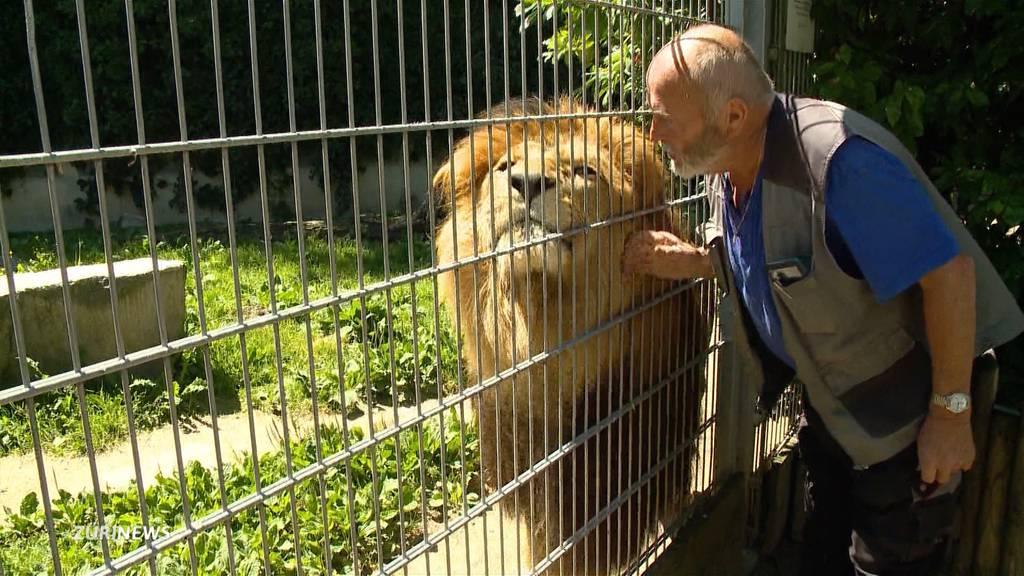 Angriff im Tiergehege: Zoo-Chef erklärt den Umgang mit Schusswaffen