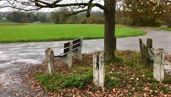 Gemeinde und Kanton sind sich über die Änderung des Schutzplans an der Reuss in Fischbach-Göslikon nicht einig.