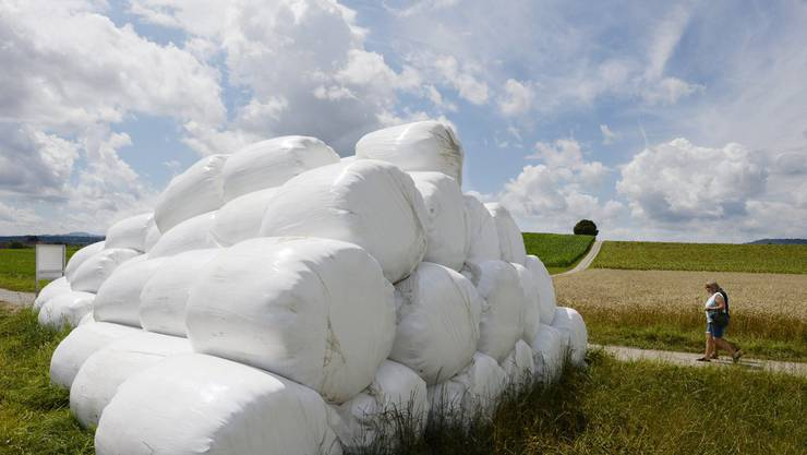 Der Zürcher Bauernverband appelliert an die Solidarität innerhalb der Landwirtschaft und schaltet deshalb im Internet eine Futtermittelbörse auf.
