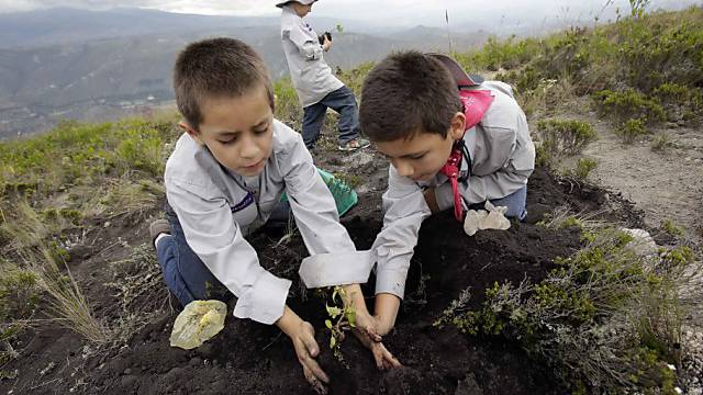 Kinder pflanzen einen Baum auf dem Catequilla-Hügel in Ecuador